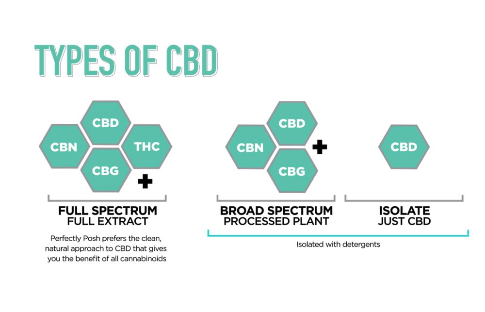 CBD tinh chất, toàn phổ, và phổ rộng: sự khác biệt và cách thức sử dụng